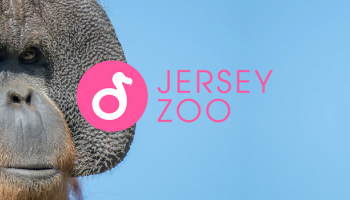 Girlguiding South West England Roadshow at Jersey Zoo
